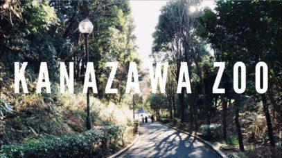 Kanazawa Zoo, Yokohama Travel Vlog in Japan 2019 🇯🇵