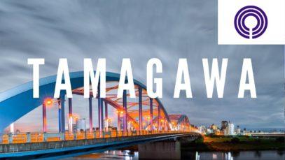 Tamagawa, Kawasaki Travel Vlog in Japan 2017 🇯🇵
