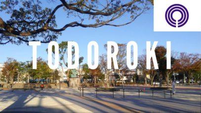 Todoroki Bazaar, Kawasaki Travel Vlog in Japan 2018 🇯🇵