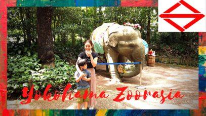 Yokohama Zoorasia | YokohamaTravelVlog in Japan 2020 🇯🇵