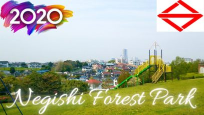 Negishi Forest Park Yokohama Travel Vlog in Japan 2020 🇯🇵