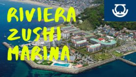 Riviera Zushi Marina, Zushi Travel Vlog in Japan 2020 🇯🇵
